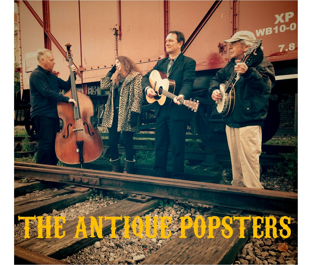 Fine acoustic band for weddings, private parties, functions barn dances, celiidhs